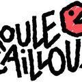 Roule Cailloux En Concert