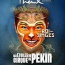 Le Cirque PhÃ%onix-Cirque De PÃ%okin
