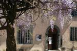Musée Demeure Sellier Cogolin