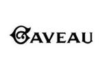 Salle Gaveau Paris 8e