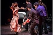 Cie Flamenco Vivo Avignon