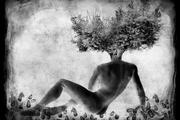 Exposition Hommes Nature