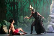 Le Livre de la Jungle, Le Musical