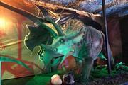 Le Musée Ephémère présente l'île aux dinosaures