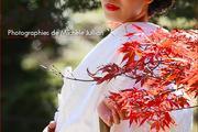 Les couleurs sous le signe de l'éphémère ou l'impermanence des choses au Japon
