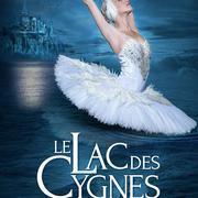 Le Lac Des Cygnes - report