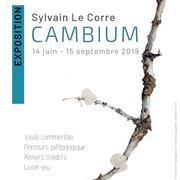 Sylvain LE CORRE - « CAMBIUM »