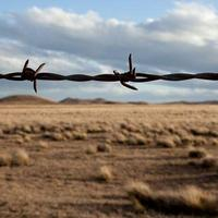 Histoire Connectée : Du Pays d'Olmes - l'Amérique Latine