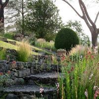 Visite Découverte Du Jardin De June