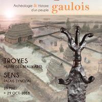 """Visites guidées de l'exposition """"Les Sénons. Archéologie et histoire d'un peuple gaulois"""""""