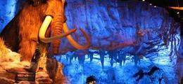 Exposition de dinosaures: Le Musée Ephémère