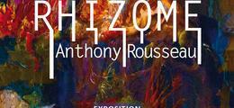 Exposition Rhizome Anthony Rousseau