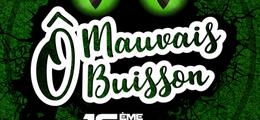 Festival Ô Mauvais Buisson 2020