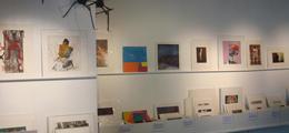 Galerie place à l'art Voiron