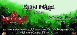 In Purulence / Demenzia Mortis / Putrid Inbred