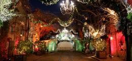 La sortie incontournable des vacances de Noël : Le Festival du Merveilleux
