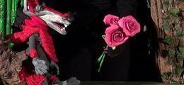 Le loup qui voulait changer de couleur - Marionnettes
