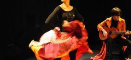 Princesse Rose Et Ses Talents