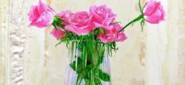 Roses & Portraits hyperréalistes