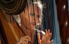 Concert Ensemble Octoplus