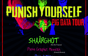 Punish Yourself en concert - le Pig Data Tour