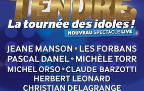 Concert Age Tendre - La Tournée des Idoles