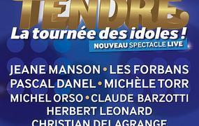 Concert Age Tendre - La Tournee Des Idoles!