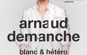 Spectacle Arnaud Demanche - report