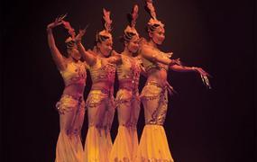 Spectacle Le Cirque Phenix - Gaïa