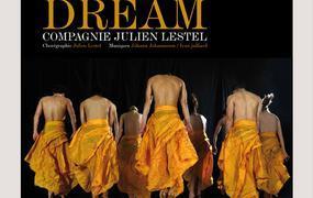 Spectacle Dream Compagnie Julien Lestel