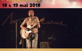 Festival Des Zicophonies 2018