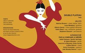 Spectacle Festival Flamenco Louis Winsberg /Jaléo et Azabache Cie La Meson