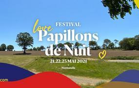 Concert Festival Papillons De Nuit billet journée