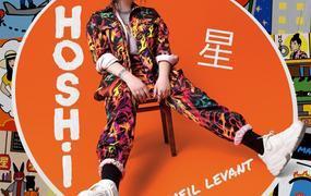 Concert Hoshi - Report