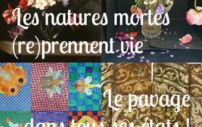 Spectacle L'ecole Au Musée « Les Natures Mortes (re)prennent Vie / Le Pavage Dans Tous Ses états ! »