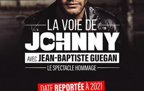 Concert La Voie De Johnny - report