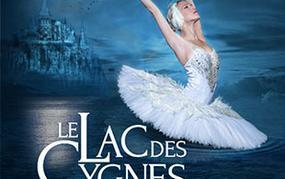 Spectacle Lac des Cygnes