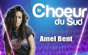 Concert Le Choeur Du Sud-show Musical - report