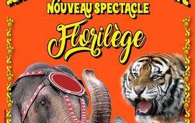 Spectacle Le Cirque La Piste d'Or