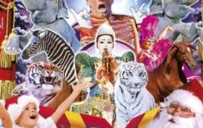 Spectacle Le Grand Cirque De Noël