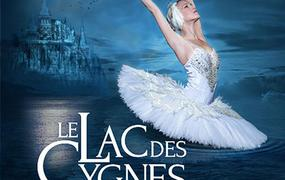Spectacle Le Lac Des Cygnes - report