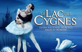 Spectacle Le Lac Des Cygnes