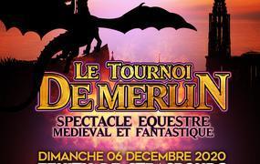 Spectacle Le Tournoi de Merlin : spectacle équestre médiéval et fantastique