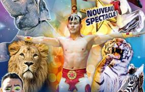 Spectacle Medrano - Festival International Du Cirque