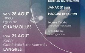 Concert Musique pour Cordes