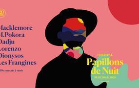Concert Papillons de Nuit 2020 Pass 1 jour