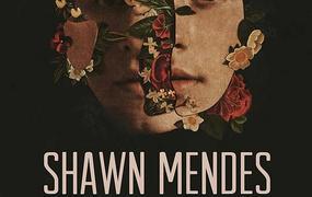 Concert Shawn Mendes - The Tour