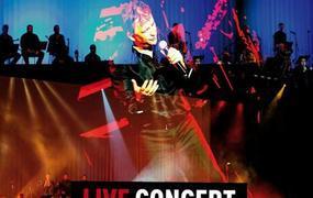 Concert Live à Zinga Zanga
