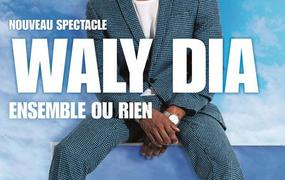 Spectacle Waly Dia - report