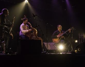 Concert de Biréli Lagrène